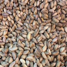 Turkish pistachios