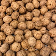 Грецкие орехи чилийские