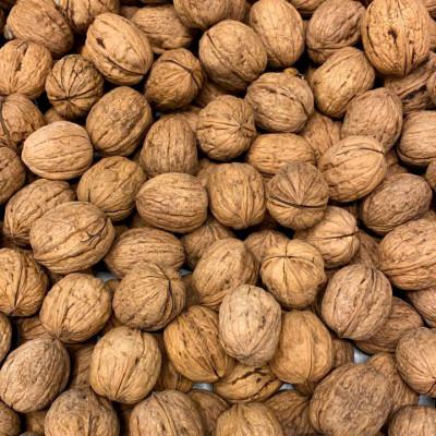 Walnuts, Chilean
